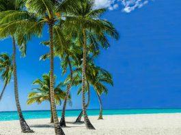 wakacje