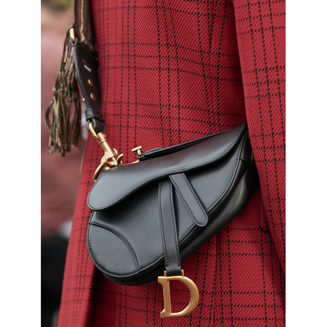 dior-saddle-bag-inside_6