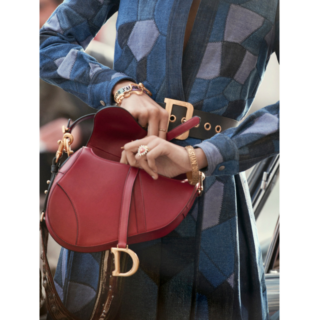 dior-saddle-bag-inside_8